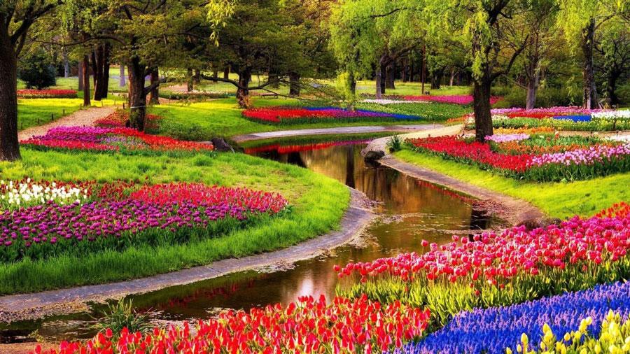 باغ گیاه شناسی آرتیس