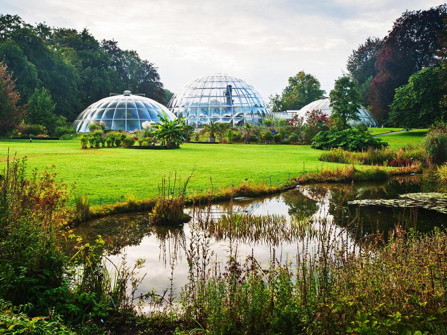 باغ گیاه شناسی زوریخ